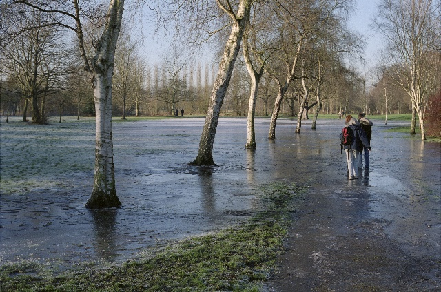 Flooding the meadows